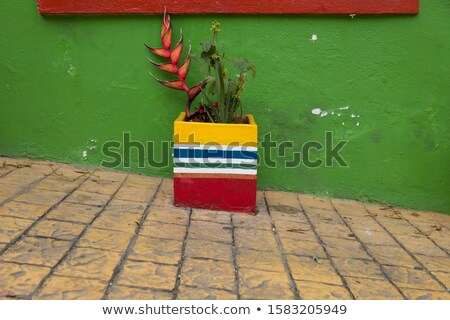 Flower pot colored in Colombian flag colors on the street of Bog Stock photo © boggy