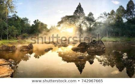 термальная ванна воды лес природы бонсай Сток-фото © leungchopan