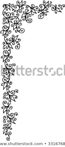 Floral vignette CCXV Stock photo © Glasaigh