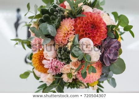 bouquet of Dahlias Stock photo © ivonnewierink