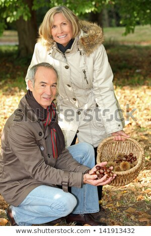 Middle-aged couple gathering chestnuts Stock photo © photography33