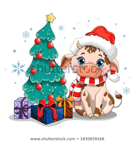 Cartoon christmas Blauw vogel hoed Stockfoto © komodoempire