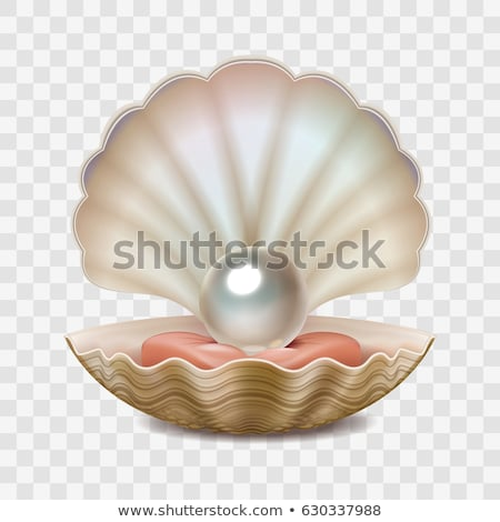 seashell and pearl necklace Stock photo © gewoldi