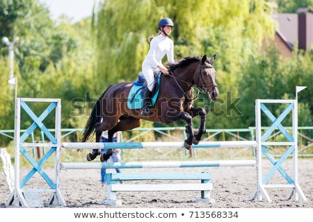 A young horseback rider Stock photo © photography33
