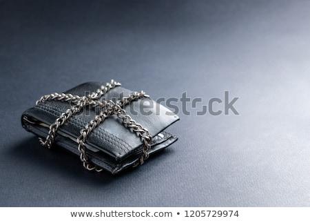 Pénz lakat biztonság terv biztonság Euro Stock fotó © gladiolus