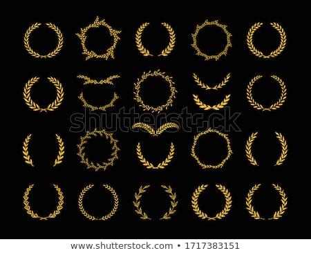 oro · corona · aislado · blanco · deporte · hoja - foto stock © shutswis