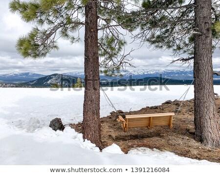swing bench overlooking mountains Stock photo © alex_grichenko