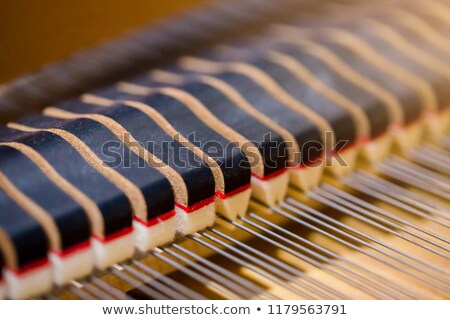 Interior of grand piano showing strings and structure (close up) Stock photo © Bertl123