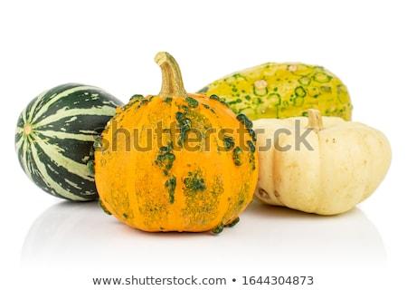 decorative gourd Stock photo © saddako2