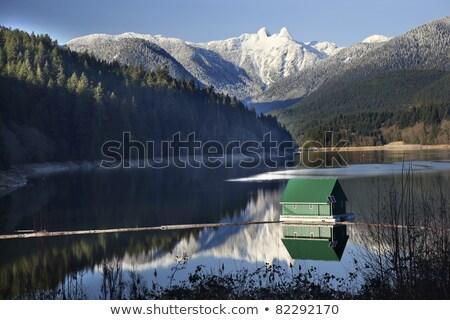 reservoir · kristal · meer · bos · heuvels · Californië - stockfoto © billperry