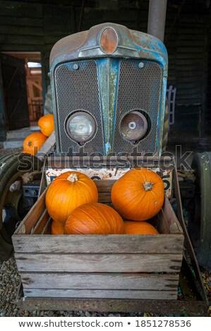 edad · granja · tractor · hierba · trabajo - foto stock © alex_grichenko