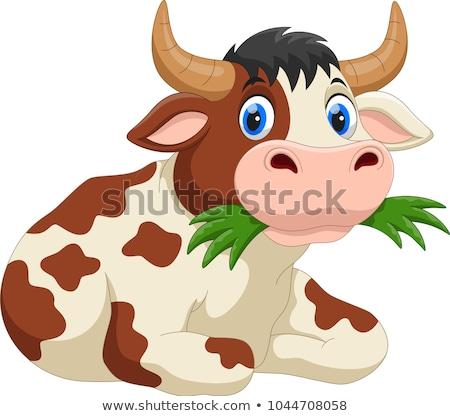 vaca · desenho · animado · ilustração · casa · natureza · gato - foto stock © adrenalina