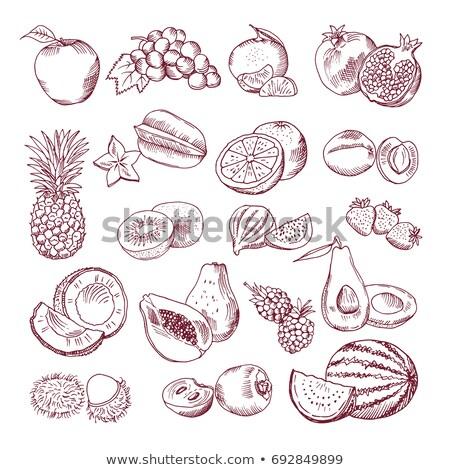芸術 実例 新鮮な 健康 フルーツ ストックフォト © Viva