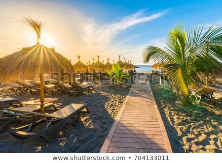 vue · célèbre · plage · blanche · forme · sahara - photo stock © 1Tomm