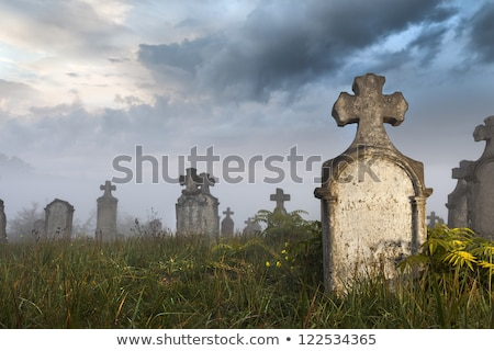 very old gravestone on a cemetery stock photo © michaklootwijk