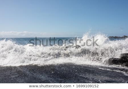 Breaking waves on sandy beach seascape stock photo © jenbray