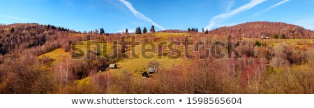 Deserted sheepfold Stock photo © photosebia
