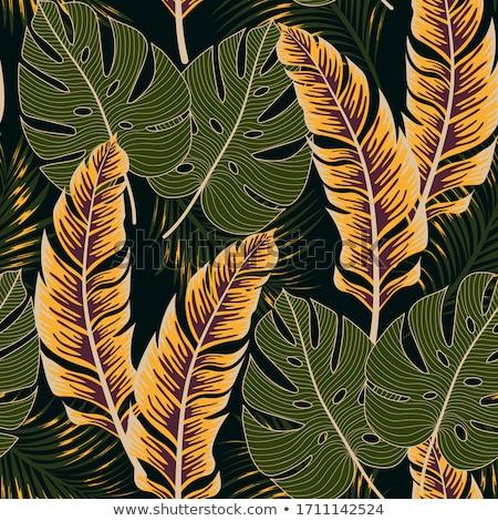 シームレス エキゾチック パターン 熱帯 ヤシの葉 ストックフォト © mcherevan