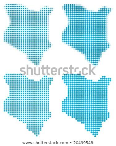 térkép · Kenya · kék · vektor · izolált - stock fotó © istanbul2009