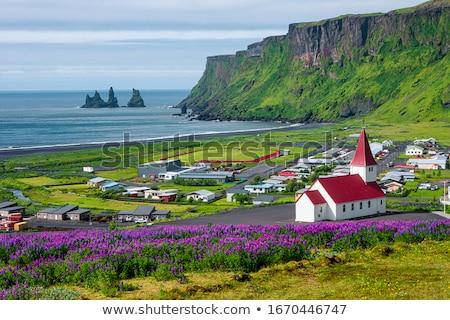paysage · Islande · scénique · vue · beauté - photo stock © elxeneize