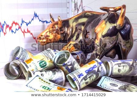 Boğa pazar ekonomik finansal iş Stok fotoğraf © Lightsource