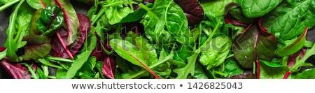 fresh salad with beet Stock photo © tycoon