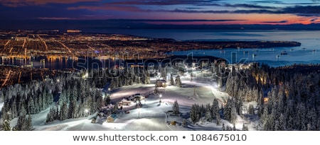 View of Vancouver from Grouse Mountain Stock photo © stockfrank