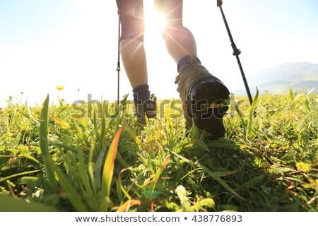 trekking · bottes · paire · vieux · utilisé · bois - photo stock © zurijeta