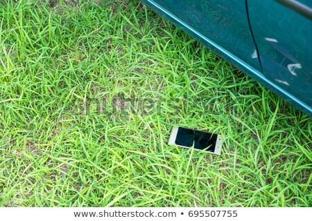 Elveszett mobiltelefon zöld fű ki fókusz gyep Stock fotó © Giulio_Fornasar