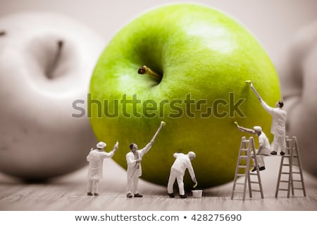 Painters coloring green apple. Macro photo Stock photo © Kirill_M
