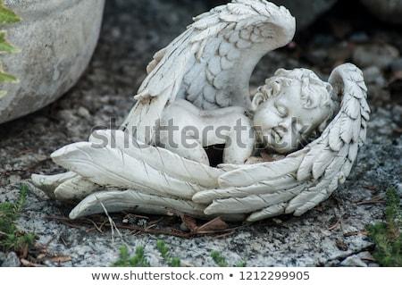 Cherub posąg otwarta księga drzewo strony Zdjęcia stock © AlphaBaby