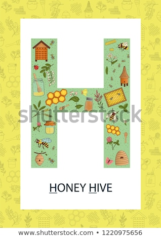 Flashcard letter H is for hive Stock photo © bluering