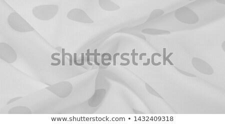 Elegáns hullám alakú fehér csészealj üres Stock fotó © Digifoodstock