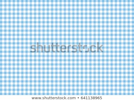 Checked blue and white textile Stock photo © Epitavi