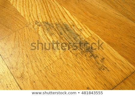 Beschadigd hardhout oude esdoorn vloer Stockfoto © StephanieFrey