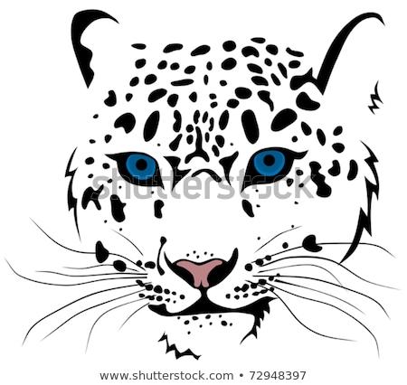 gato · leopardo · neve · barras · olho - foto stock © barsrsind