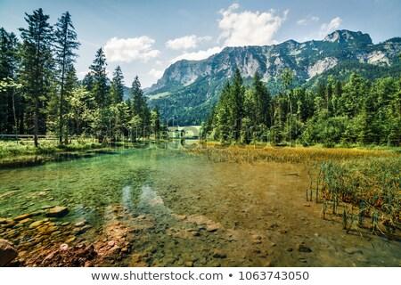 Austria · piękna · jezioro · krajobraz · górskich · podróży - zdjęcia stock © tepic