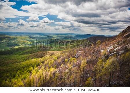 Velho trapo trilha vale rochas subir Foto stock © backyardproductions