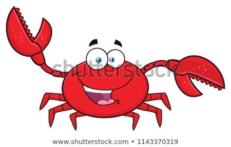 caranguejo · arte · bocado · concha · marinha - foto stock © hittoon