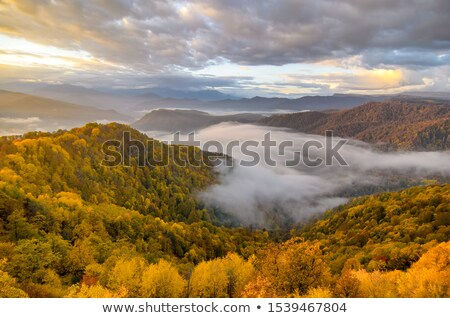 Mountain landscape. Caucasus nature. Lago-Naki, Russia, Europe Stock photo © dashapetrenko