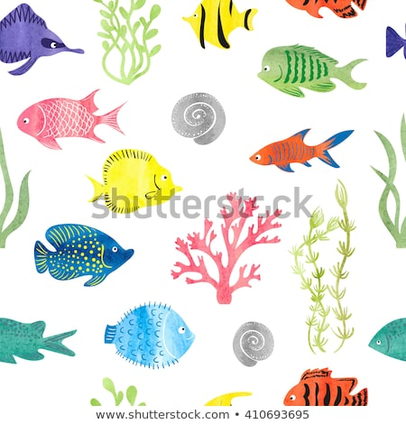 Ocean and Sea Fishes Isolated on Color Backdrops Stock photo © robuart