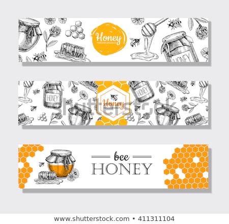 Klasszikus poszter virág méhsejt organikus méz Stock fotó © lissantee