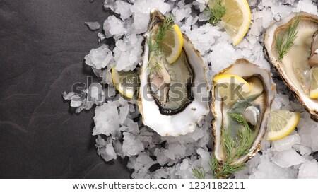 Cubo de hielo frescos dieta saludable mariscos aperitivo Foto stock © M-studio