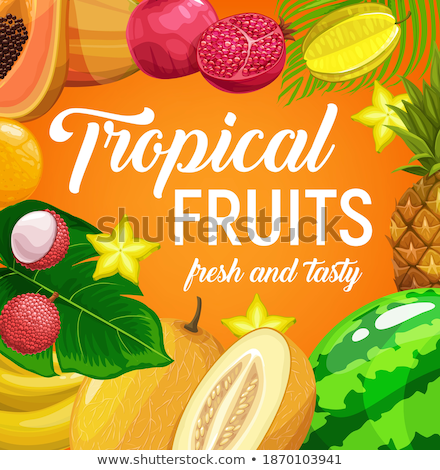 Carambola and Lychee Posters Vector Illustration Stock photo © robuart