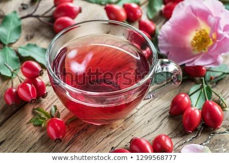Rosa anca tè bianco Cup fresche Foto d'archivio © madeleine_steinbach