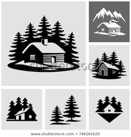 Hout cabine bos illustratie gebouw bos Stockfoto © colematt
