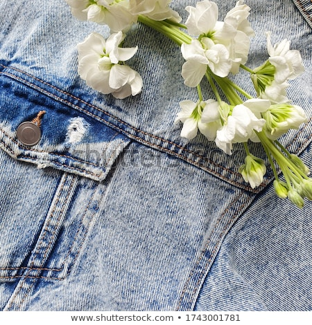 boeket · witte · bloem · zak · jeans · groene · denim - stockfoto © Illia