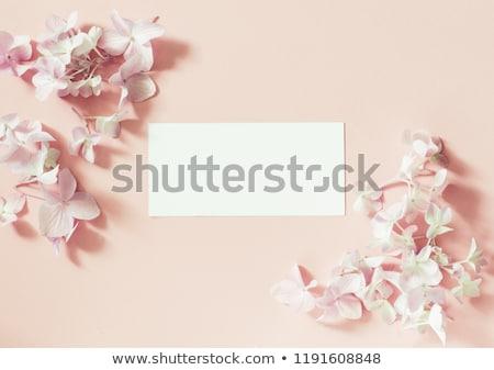 Foto stock: Flores · saludo · patrón · pastel · felicitación · blanco