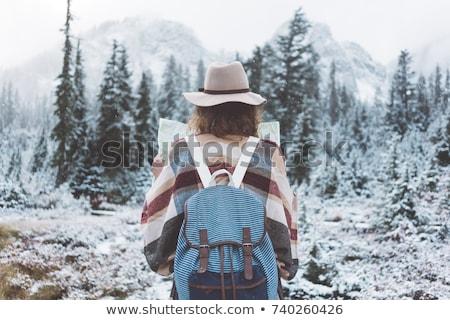 Navidad montanas casual bohemio azul moda Foto stock © lovleah