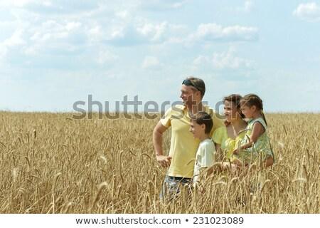 Porträt Vater Tochter spielen Weizenfeld Sonnenuntergang Stock foto © Lopolo